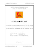 Báo cáo thực tập quản trị kinh doanh: Công ty cổ phần thương mại và sản xuất Thái Việt Mỹ