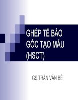 Bài giảng ghép tế bào gốc tạo máu (HSCT) – GS  trần văn bé