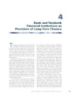 Bank and Nonbank Financial Institutions as Providers of LongTerm Finance