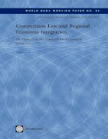 Competition Law and Regional Economic Integration