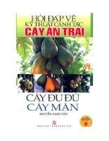 Ebook Hỏi đáp về kỹ thuật canh tác cây ăn trái (Quyển 6- Cây đu đủ, cây mận)- Phần 1