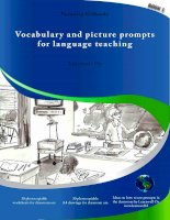 Vocabulary and picture prompts for language teaching book 1