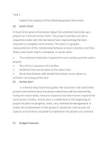 Task 1 Explain the purpose of the following project document.