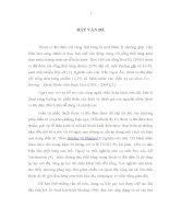 ĐÁNH GIÁ kết QUẢ PHẪU THUẬT đặt DỤNG cụ LIÊN GAI SAU (INTRASPINE) TRONG điều TRỊ THOÁT vị đĩa đệm cột SỐNG THẮT LƯNG   CÙNG tại BỆNH VIỆN VIỆT đức