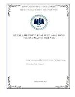 Tiểu luận môn nghiệp vụ ngân hàng thương mại hệ thống pháp luật ngân hàng thương mại tại việt nam