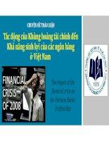 Thuyết trình tiểu luận môn ngân hàng thương mại tác động của khủng hoảng tài chính đến khả năng sinh lợi của các ngân hàng ở việt nam