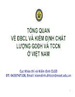 Tổng quan về ĐBCL và kiểm định chất lượng giáo dục đại học và TCCN ở Việt Nam