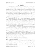 Báo cáo thực tập: Hạch toán nghiệp vụ kế toán ở công ty Đại Tân