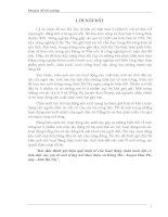 Bước Đầu Đánh Giá Hiệu Quả Kinh Tế Của Hoạt Động Chăn Nuôi Lợn Có Tính Đến Các Yếu Tố Môi Trường Nơi Thực Hiện Xã Hồng Hà, Tỉnh Hà Tây