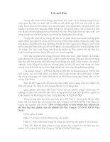 Một Số Biện Pháp Cơ Bản Nhằm Đẩy Nhanh Tốc Độ Tiêu Thụ Sản Phẩm Của Chi Nhánh Hà Nội, Công Ty Dynochem Việt Nam