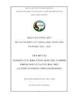 NGHIÊN cứu KHẢ NĂNG hấp THỤ CADIMI TRONG đất của cây RAU dệu (ALTERNANTHERA PHILOXEROIDES )