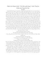 Phân tích đoạn trích Chí Khí Anh Hùng ( Nguyễn Du ) Ngữ Văn 10 tập 2