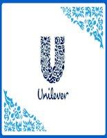 Thuyết trình môn quản trị chiến lược chiến lược kinh doanh của tập đoàn unilever