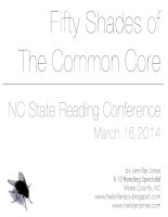 50 shades of the common core for ELA critical thinking for all 1