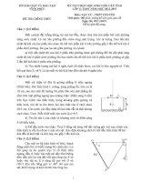 đề thi vật lý chuyên lớp 12 vĩnh phúc năm 2012 2013