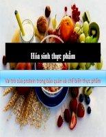 vai trò của protein trong bảo quản  và chế biến thực phẩm
