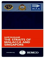 safe passage in the straits of malacca and singapore