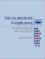 Bài giảng chiến lược phát triển kinh tế vùng địa phương (học kì xuân 2015)   nguyễn xuân thành
