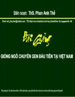 ThS.Phan Anh Thế: Bài giảng giống ngô biến đổi gen đầu tiên tại việt nam