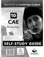 Succeed in CAE 2015 self study guide