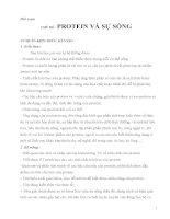 giáo án tích hợp liên môn sinh học 9 bài PROTEIN và sự SỐNG
