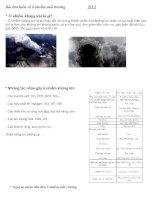Bài tìm hiểu về ô nhiễm môi trường