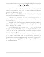 Báo Cáo Thực Tập Công Ty Supe Phốt Phát Và Hoá Chất Lâm Thao