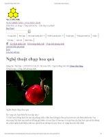 Nghệ thuật chụp hoa quả