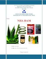 Báo cáo môn Công nghệ bảo quản và chế biến rau trái Nha đam
