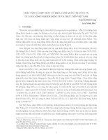 THÂU TÓM VÀ HỢP NHẤT TỪ KHÍA CẠNH QUẢN TRỊ CÔNG TY: LÝ LUẬN, KINH NGHIỆM QUỐC TẾ VÀ THỰC TIỄN VIỆT NAM