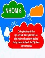 Chứng khoán phái sinh Lịch sử hình thành phát triển và  Định hướng xây dựng thị trường chứng khoán phái sinh cho Việt Nam trong tương lai