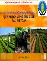 báo cáo đánh giá môi trường chiến lược đề án quy hoạch vùng sản xuất rau an toàn
