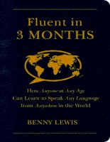 Fluent in 3 months how anyone at any age can learn to speak any language