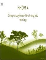 BÀI TIỂU LUẬN môn KINH tế môi TRƯỜNG công cụ quyền sở hữu trong bảo vệ rừng