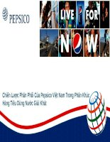 Chính sách phân phối của công ty Pepsico