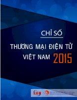 Báo cáo, chỉ số thương Mại Điện Từ Việt Nam 2015
