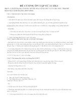 Đề cương ôn tập Lịch Sử 11