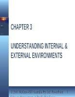 Lecture management a pacific rim focus   chapter 3  understanding internal  external environments