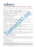 bttn tinh toan amin amino axit protein
