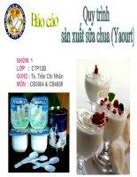 Thuyết trình Quy trình sản xuất sữa chua (Yaourt)