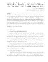 PHÂN TÍCH TÁC ĐỘNG CỦA TỶ GIÁ HỐI ĐOÁI VÀ LẠM PHÁT LÊN GIÁ VÀNG TẠI VIỆT NAM