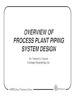Overview of process piping system