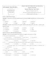 Đề thi chọn HSG tiếng Anh lớp 12