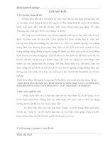 PHÂN TÍCH báo cáo kết QUẢ KINH DOANH và BIỆN PHÁP NÂNG CAO HIỆU QUẢ KINH DOANH tại CÔNG TY cổ PHẦN đầu tư  XUẤT NHẬP KHẨU NINH BÌNH