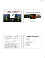 Bài giảng chỉ thị sinh học môi trường  chỉ thị sinh học môi trường nước (phần 7  ếch, nhái)   GS TS  nguyễn thế nhã