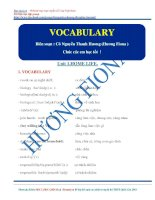 Essential vocab and phrases