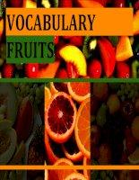 Fruits vocabulary for Starter