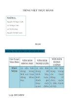 So sánh các loại văn bản   tiếng việt thực hành