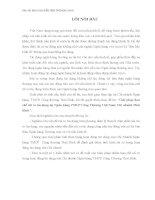 GIẢI PHÁP hạn CHẾ rủi RO tín DỤNG tại NGÂN HÀNG TMCP CÔNG THƯƠNG VIỆT NAM, CHI NHÁNH THÁI BÌNH