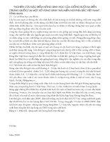 NGHIÊN CỨU ĐẶC ĐIỂM NÔNG SINH HỌC CỦA GIỐNG BƯỞI SA ĐIỀN(TRUNG QUỐC) TẠI MỘT SỐ VÙNG SINH THÁI MIỀN NÚI PHÍA BẮC VIỆT NAM